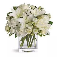 White Beauty Standard