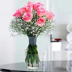 Glorious 12 Pink Roses