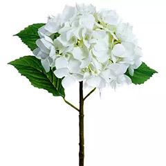 Artificial Real Touch White Hydrangea Bunches