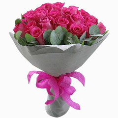 Pinks Beauty Standard