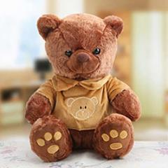 Ted, Ted, Teddy
