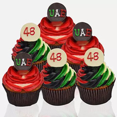 48th National Day Cupcakes