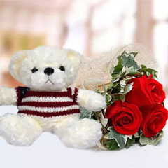 Red rose and Teddy Bear Combo
